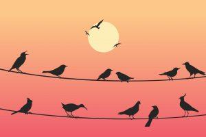 My i Inni? – wykład o granicach w związku